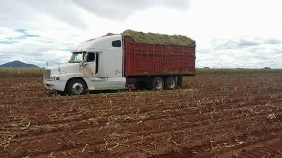 Camiones-Mexico-23