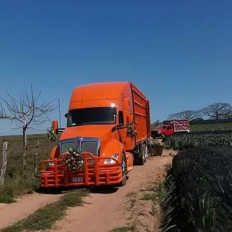 Camiones-Mexico-7