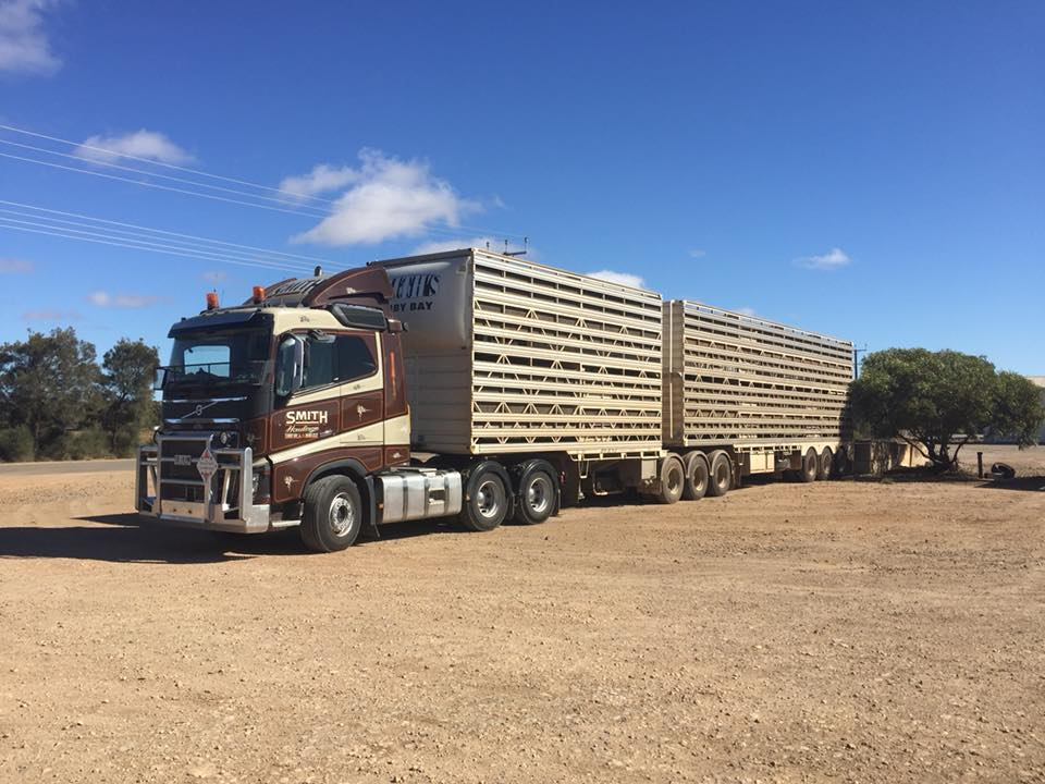 Volvo-Smith-Tumby-Bay-1