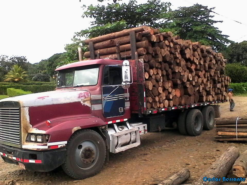 Freightliner-9