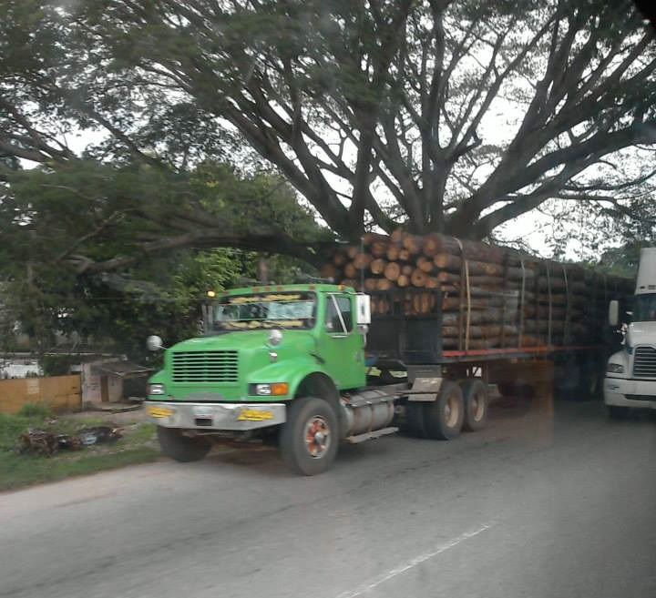 International--_-Camion-11