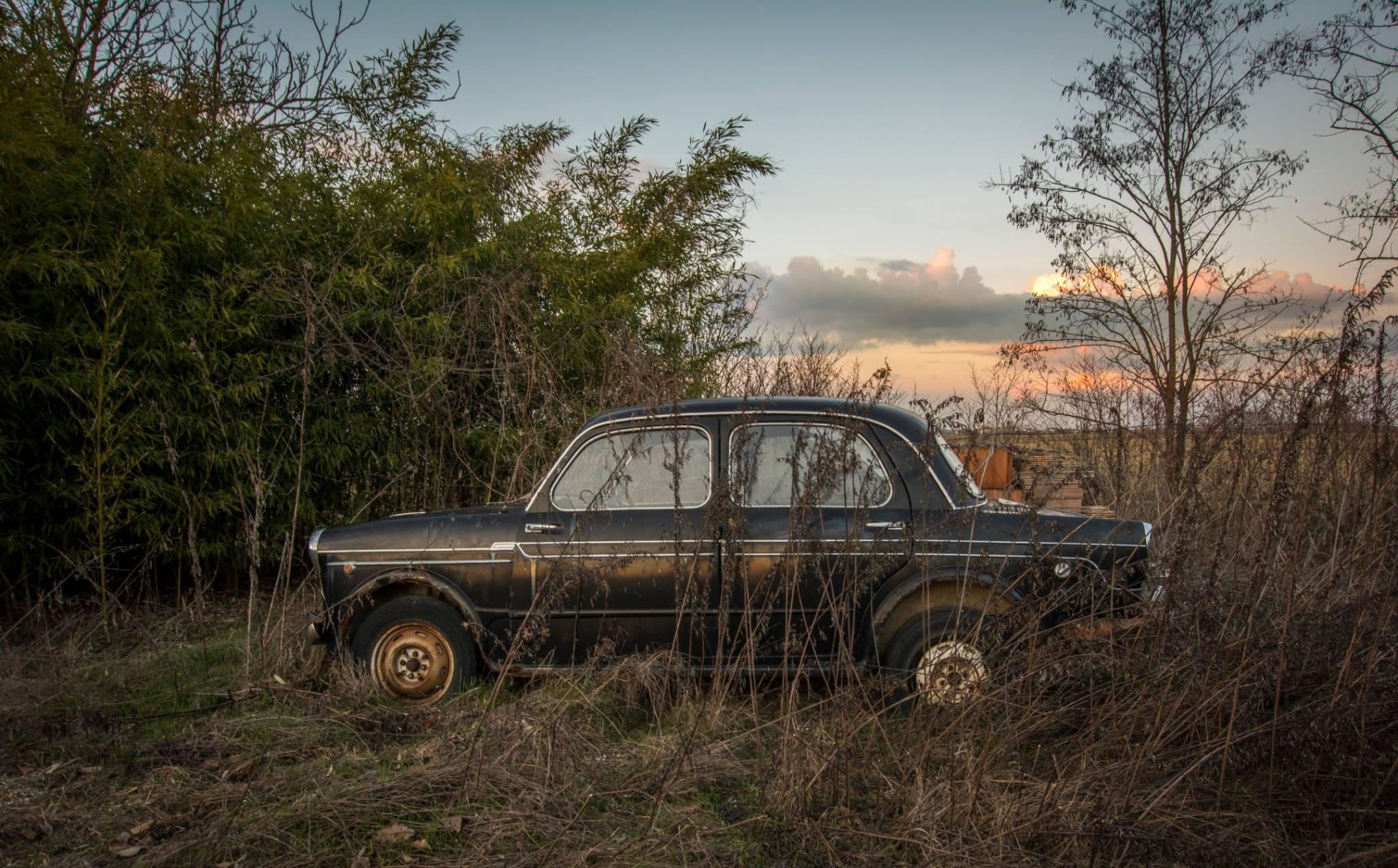 Fiat-1100-2