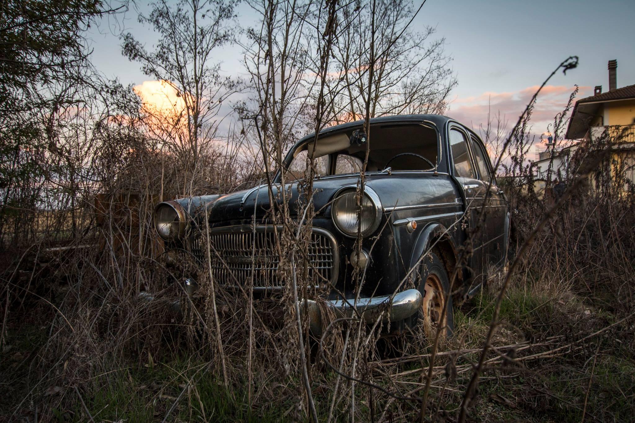 Fiat-1100-3