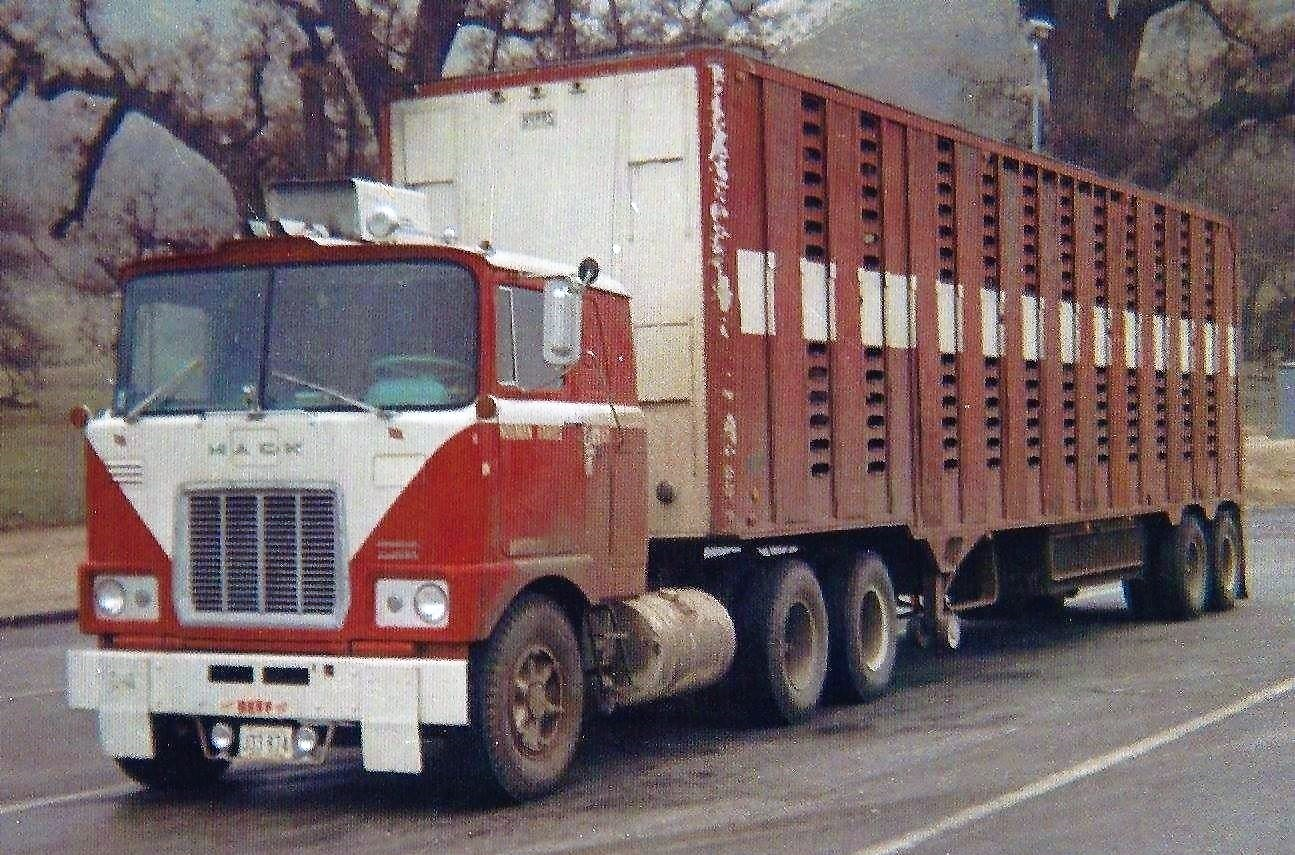 Livestock-rig-with-spoke-wheels-usually-seen-in-the-East
