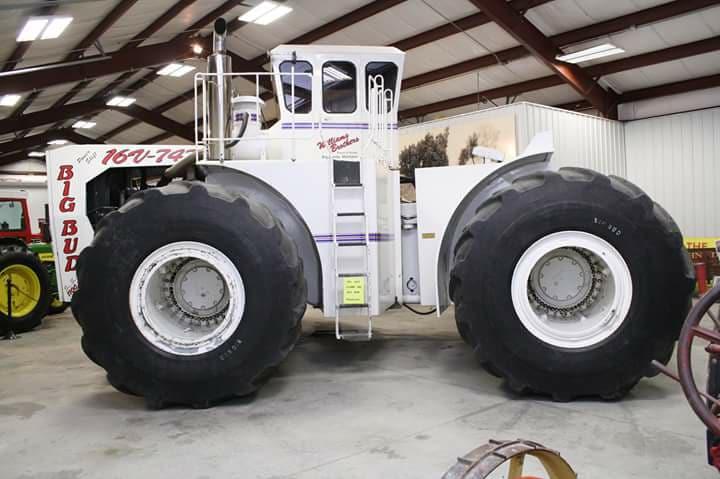 Big-Bud-1