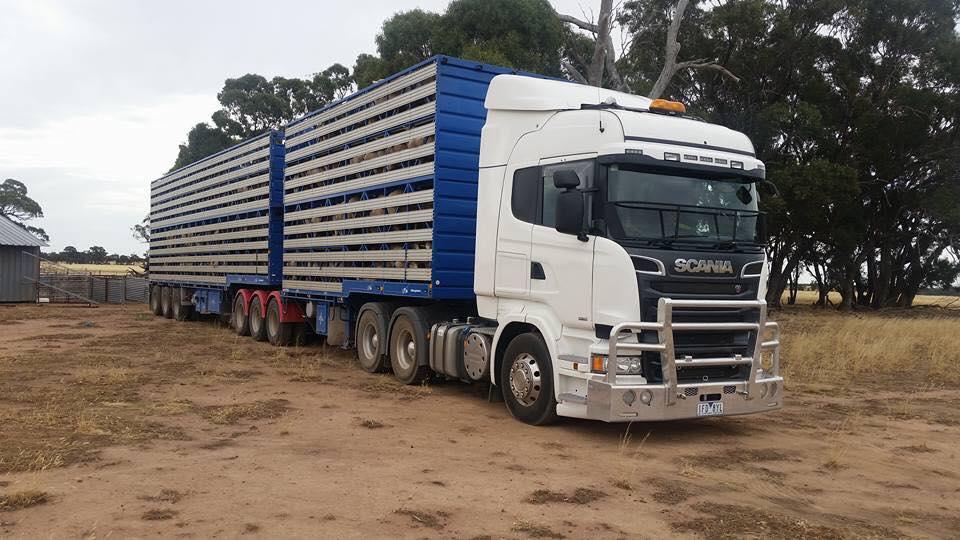 Scania-6X4-Live-stock