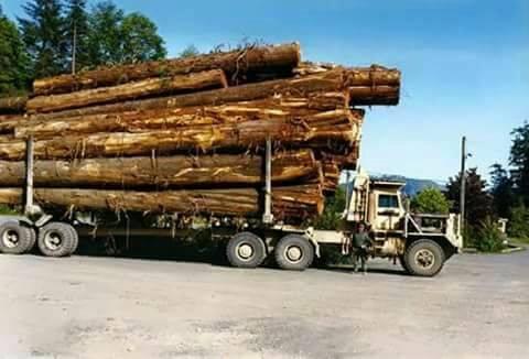 hout-wagen