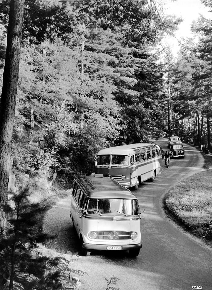 Mercedes-Zwarte-Woud-1958