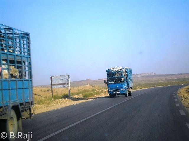 B-Raji-Photo-43