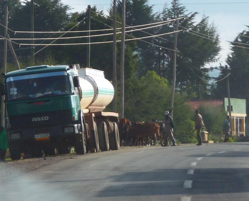 Kamion-Camion-TR-heeft-deze-toegezonden-46