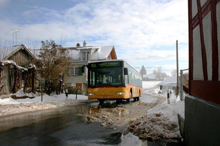 Mercedes--3-3-2011-Jonas-Schaufelberger