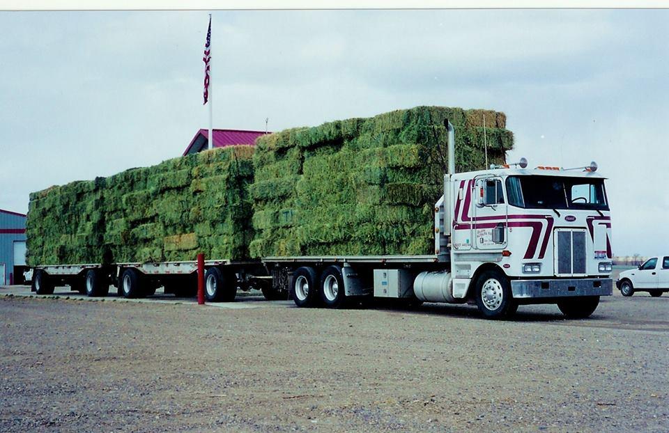 Peterbilt-Hay-Truck-Hazelton-Idaho-1999