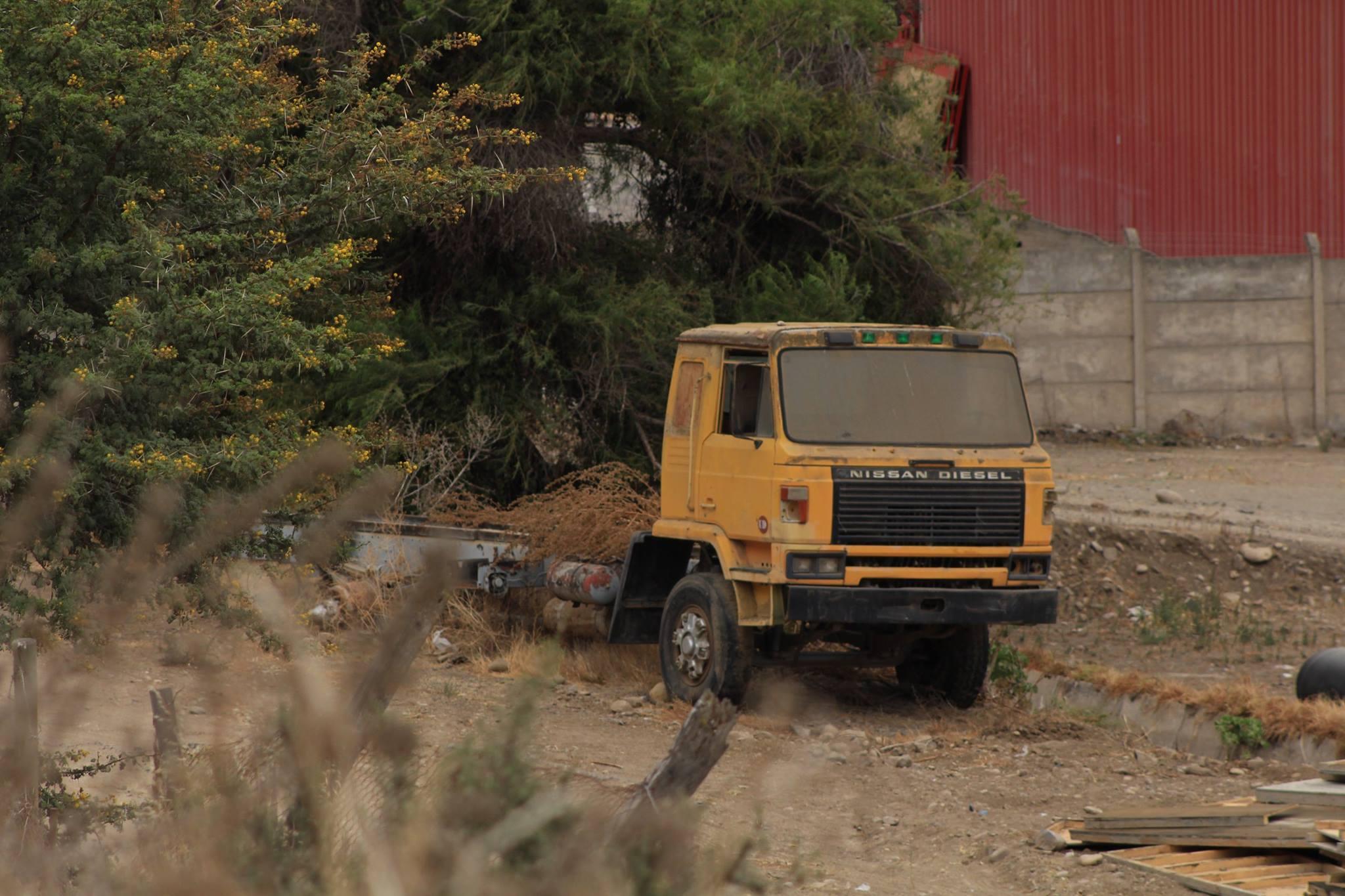 Camiones-vieja-escuela-olvidados-13