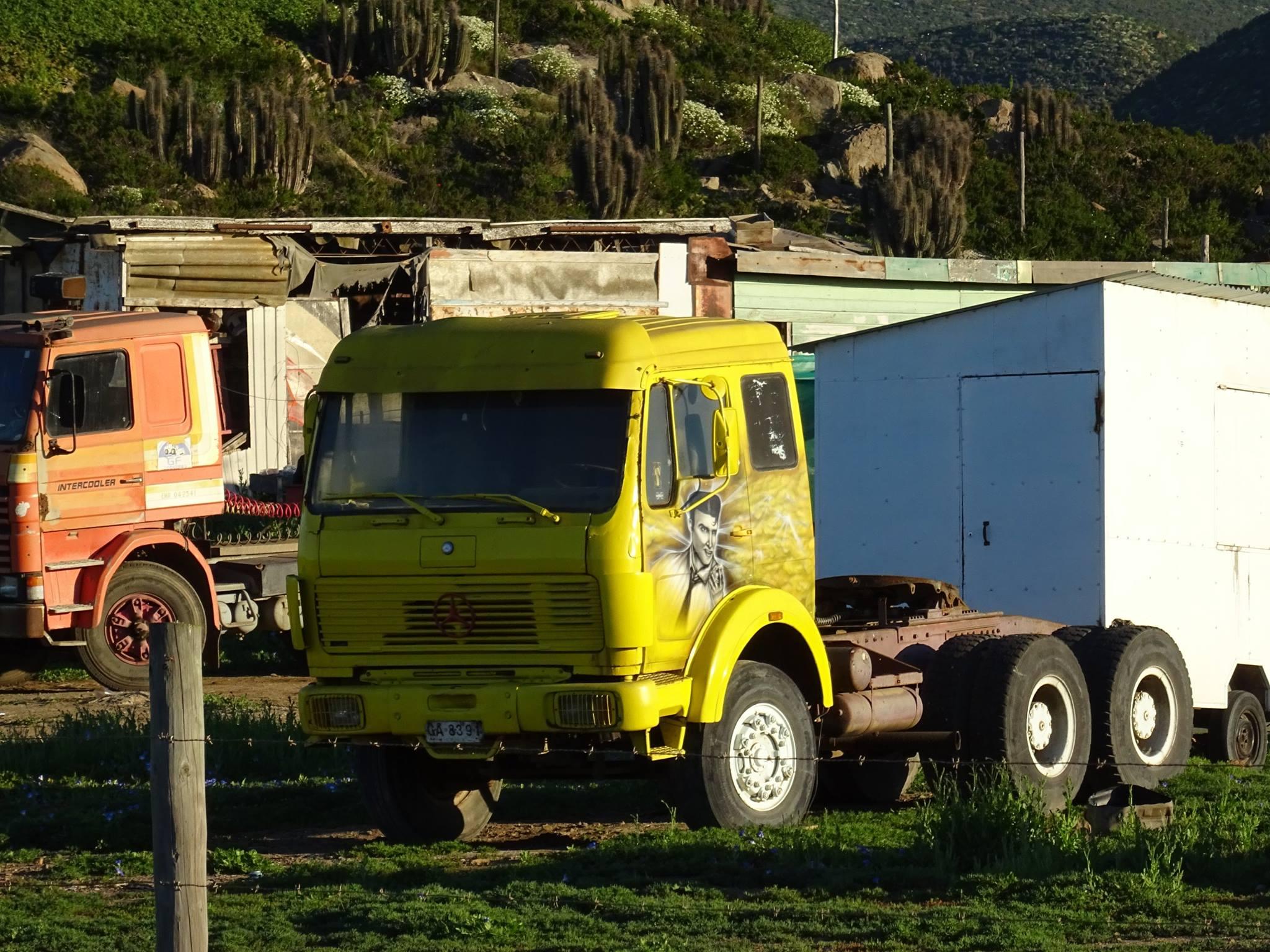 Camiones-vieja-escuela-olvidados-38