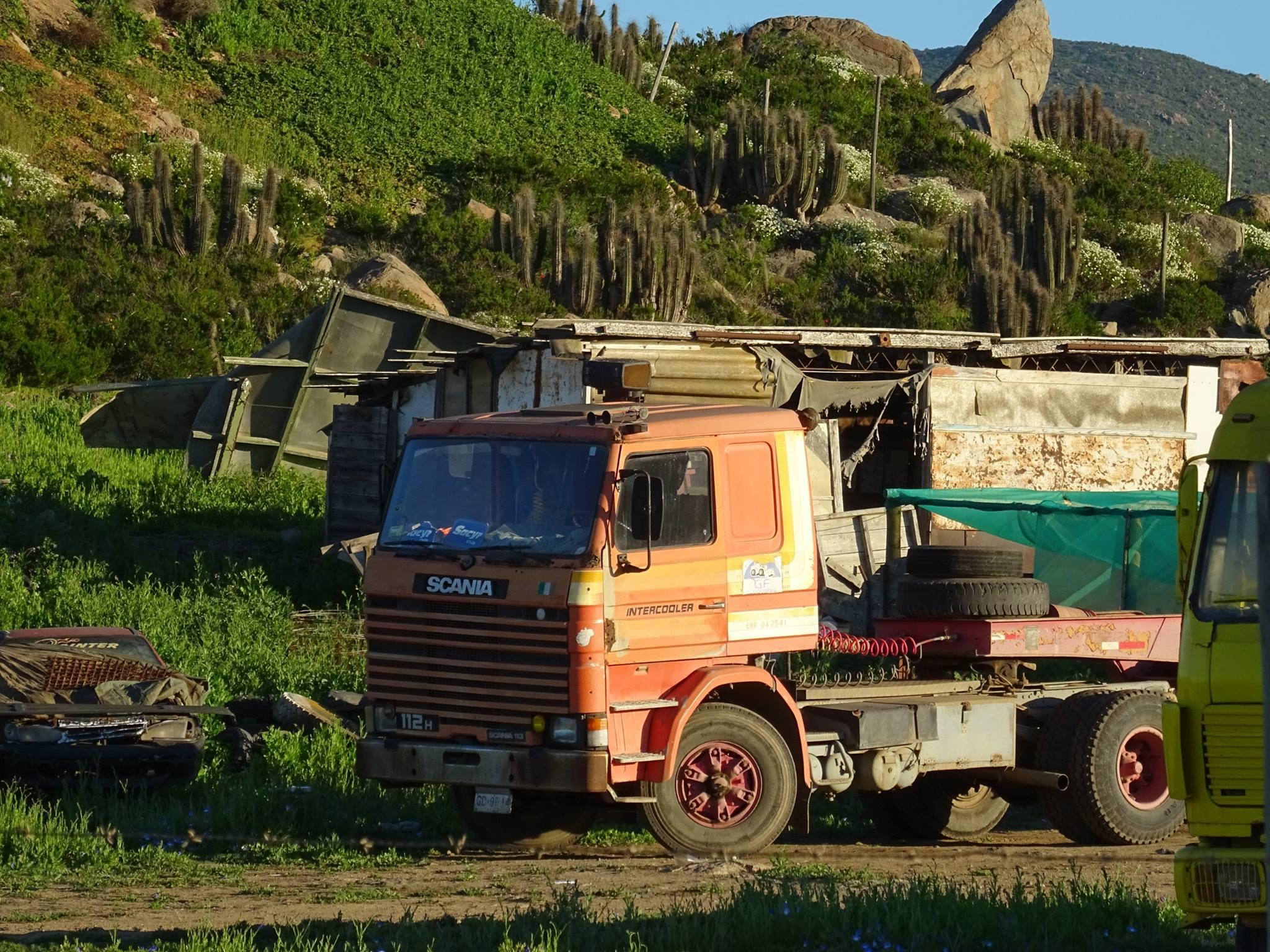 Camiones-vieja-escuela-olvidados-39
