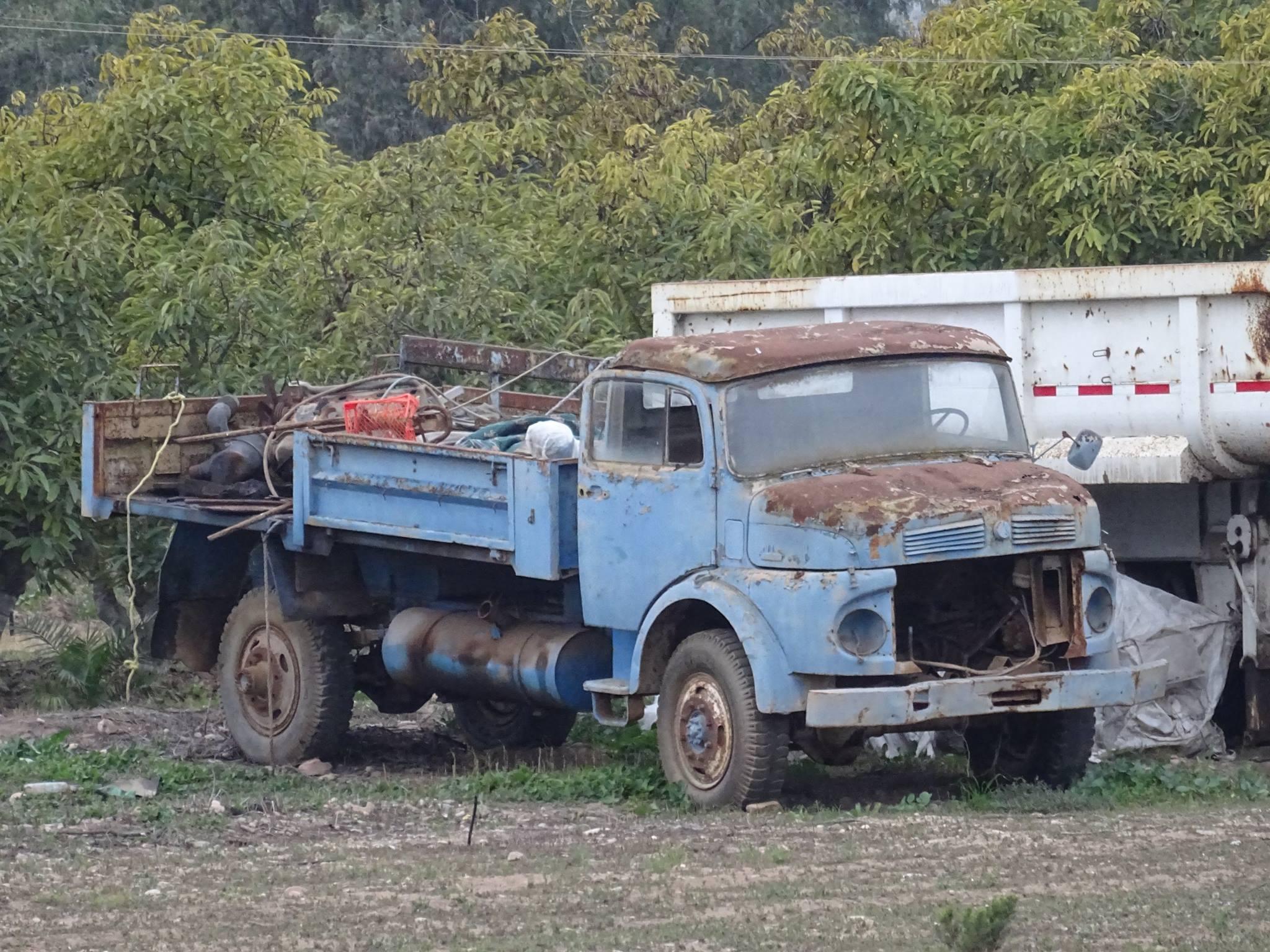 Camiones-vieja-escuela-olvidados-41