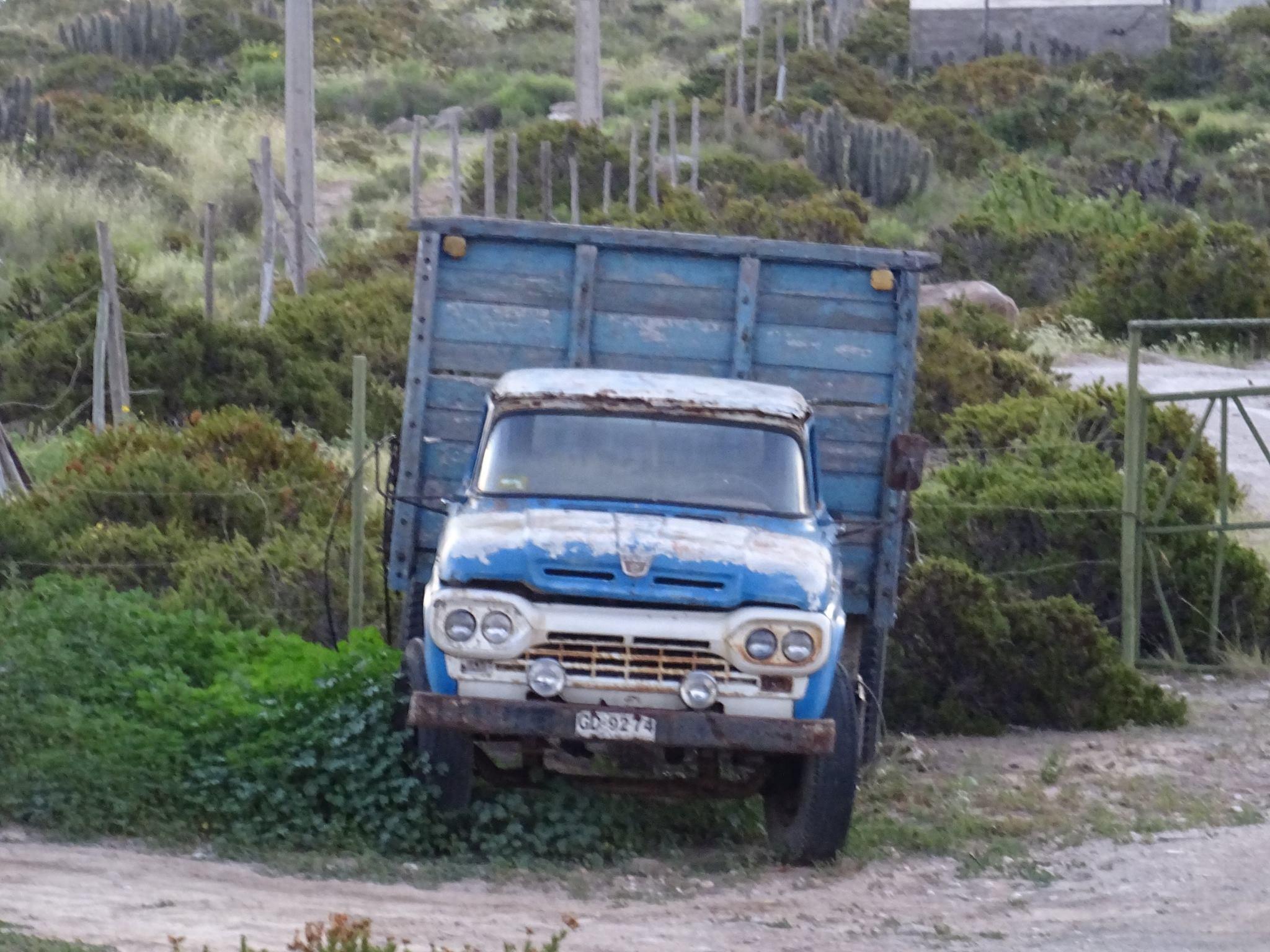 Camiones-vieja-escuela-olvidados-61