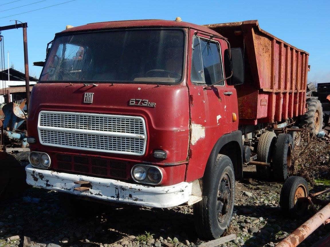 Camiones-vieja-escuela-olvidados-70