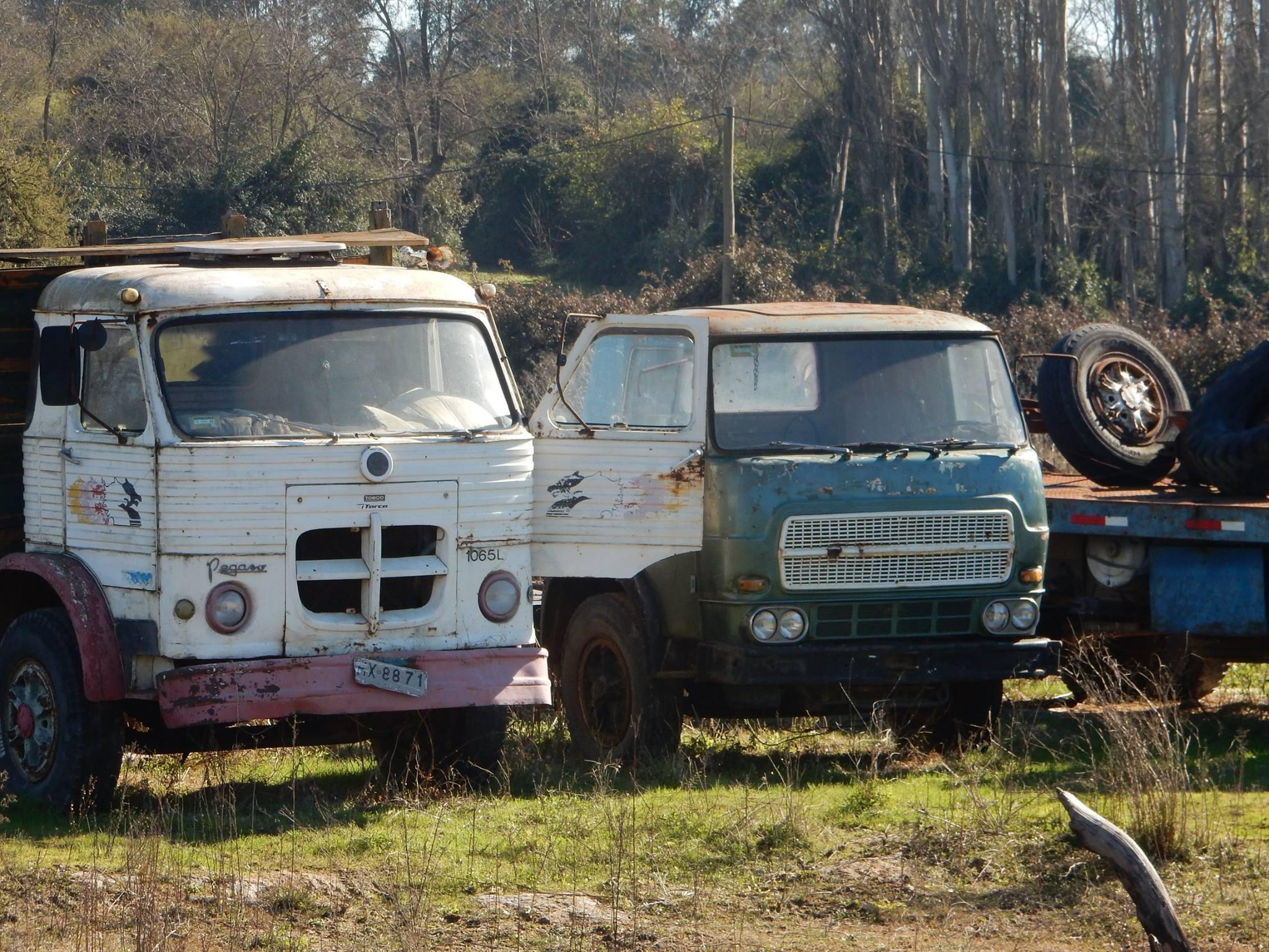 Camiones-vieja-escuela-olvidados-74
