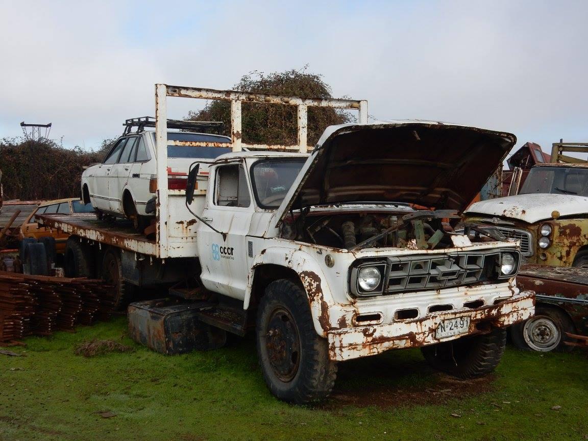 Camiones-vieja-escuela-olvidados-80