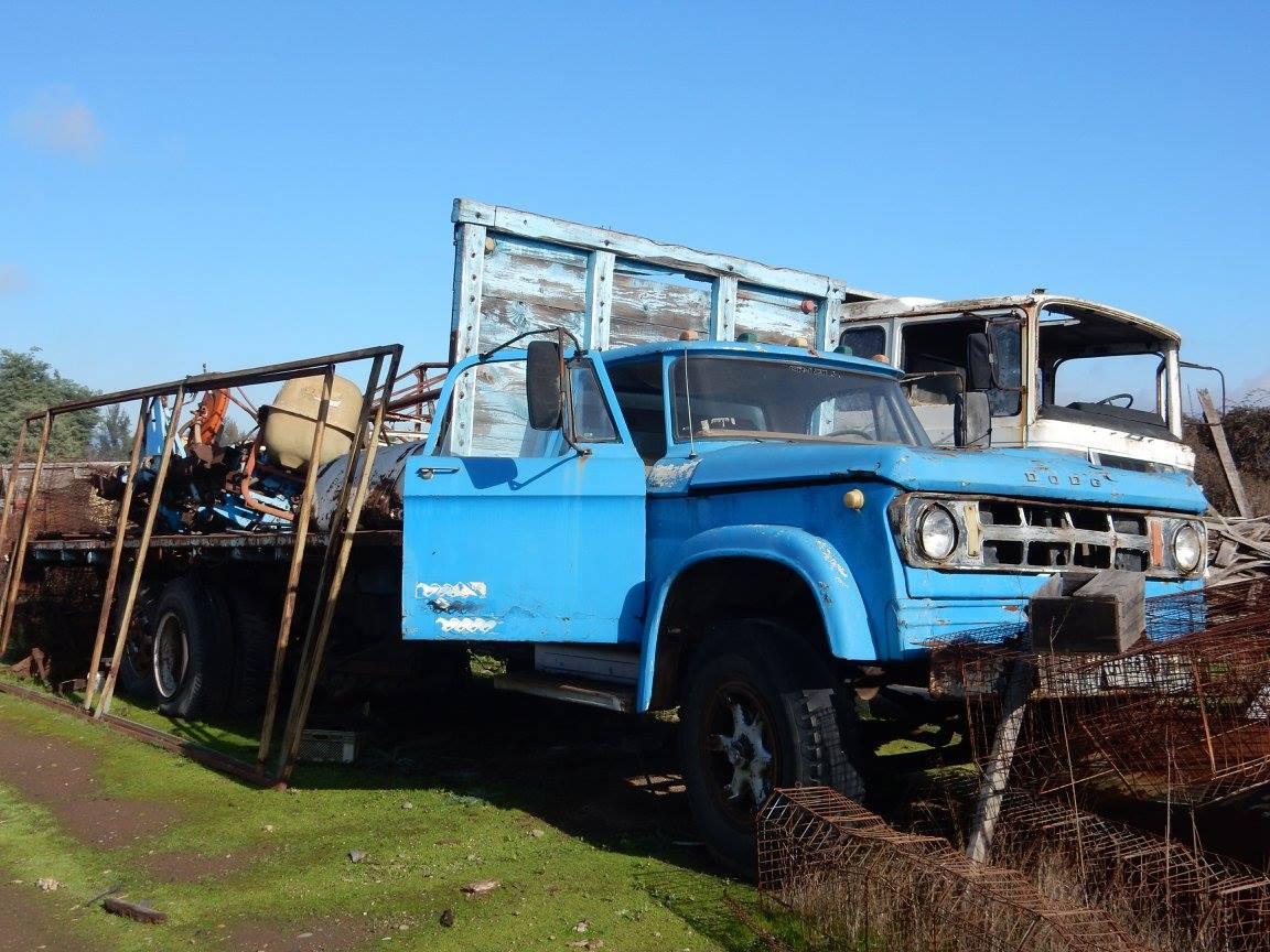 Camiones-vieja-escuela-olvidados-115
