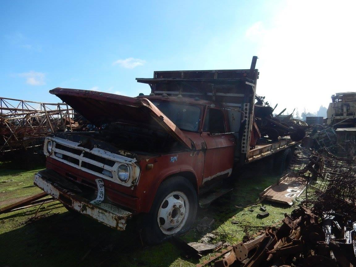 Camiones-vieja-escuela-olvidados-127