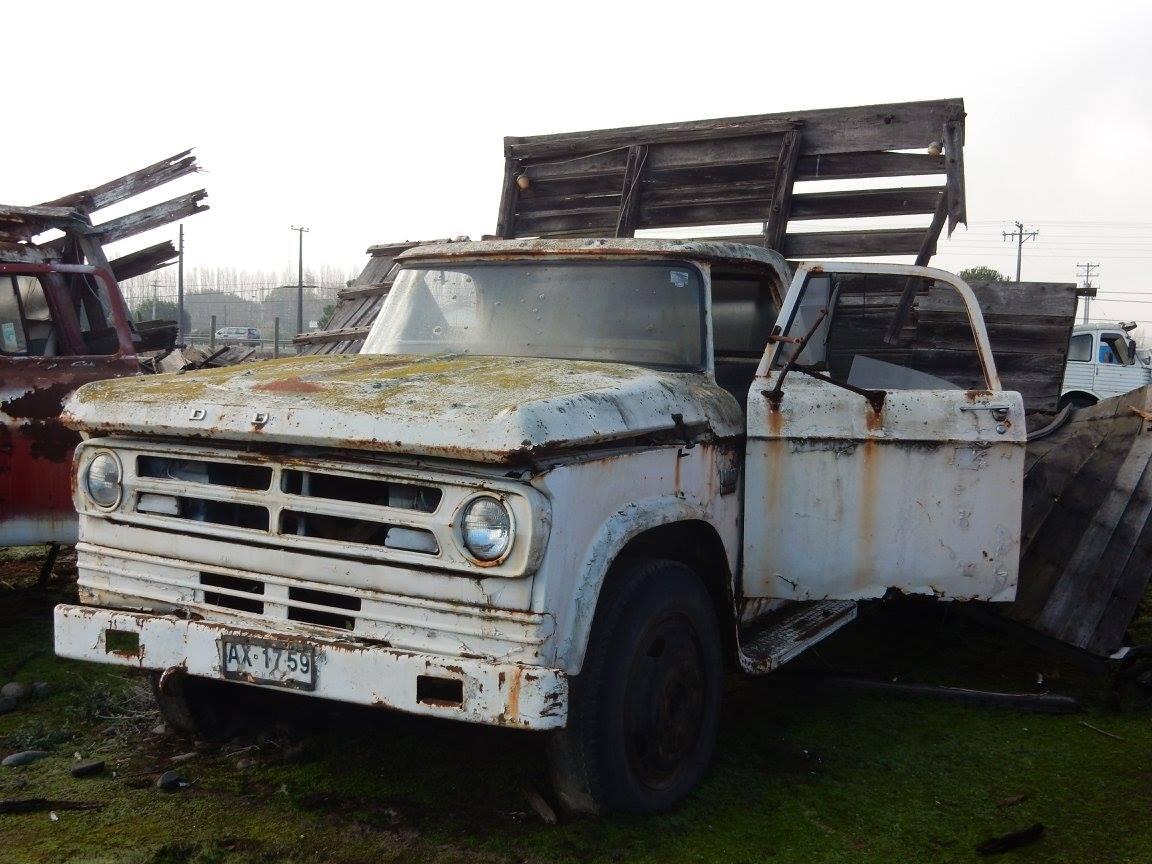 Camiones-vieja-escuela-olvidados-128
