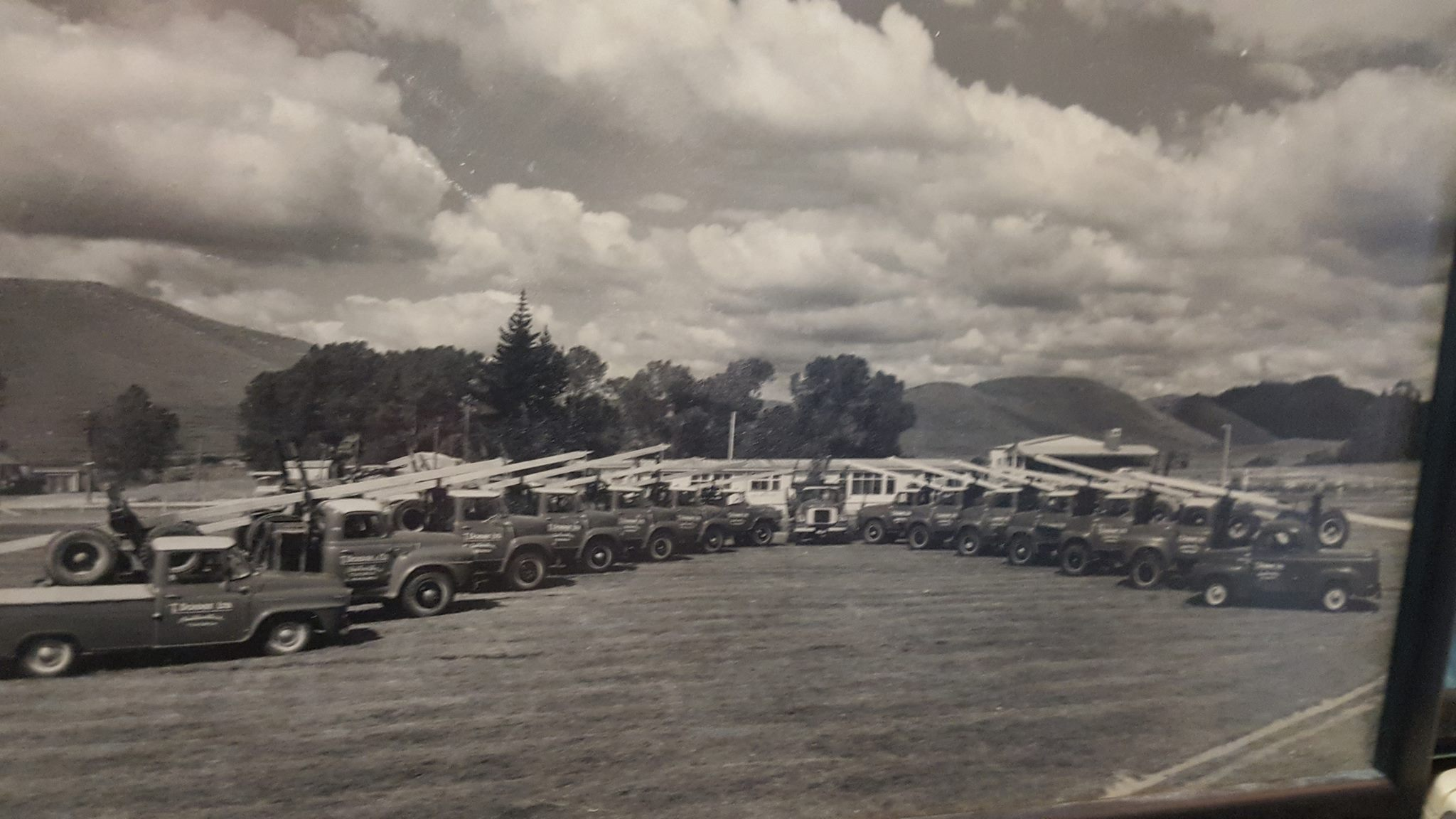 Trevor-Doidge-fleet-of-International-log-trucks-lined-up-in-Tokoroa-in-the-early-60s