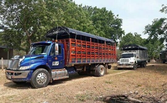 Camiones-Sencillo-Truck-Photo-12