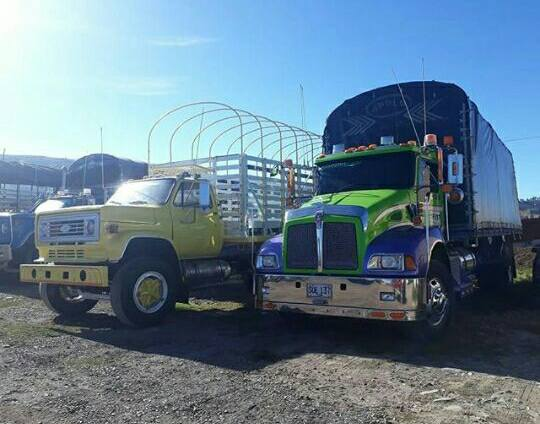 Camiones-Sencillo-Truck-Photo-18