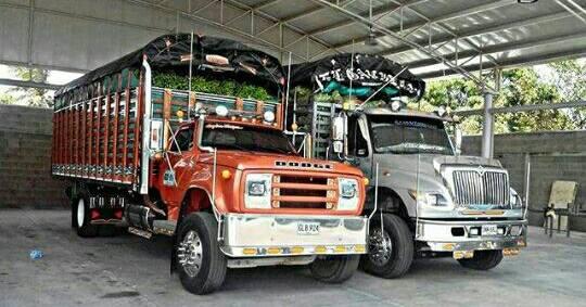 Camiones-Sencillo-Truck-Photo-2