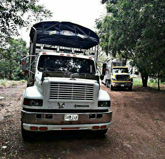 Camiones-Sencillo-Truck-Photo-20
