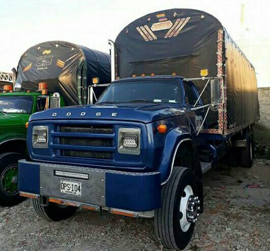 Camiones-Sencillo-Truck-Photo-4