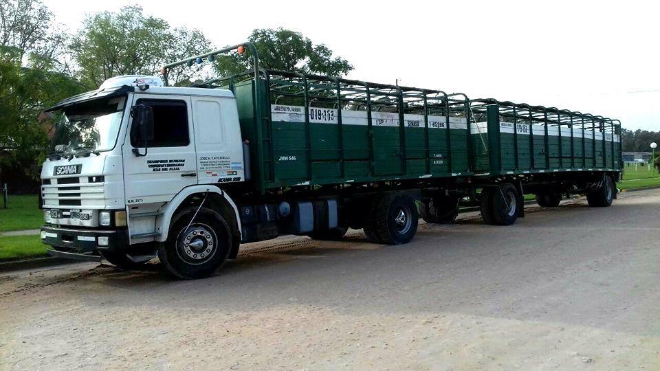 Scania-250