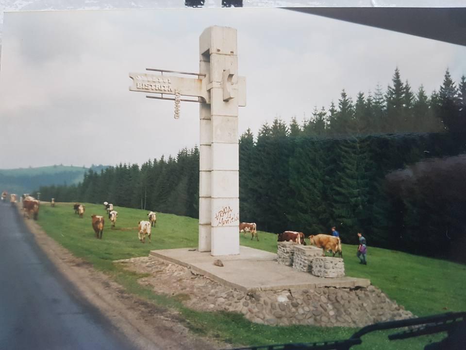 Pasqual-Koken-1995--97-7