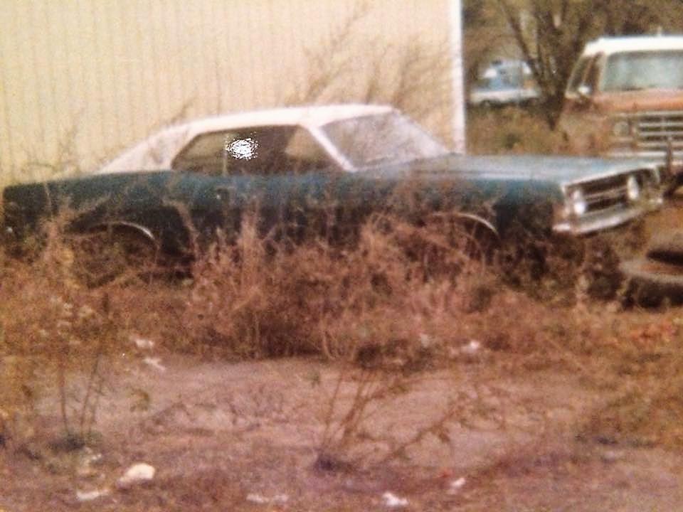Torino-GT-Scott-ODell-Philipsport-USA--2