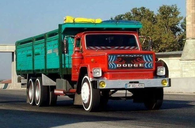 Dodge--6-4