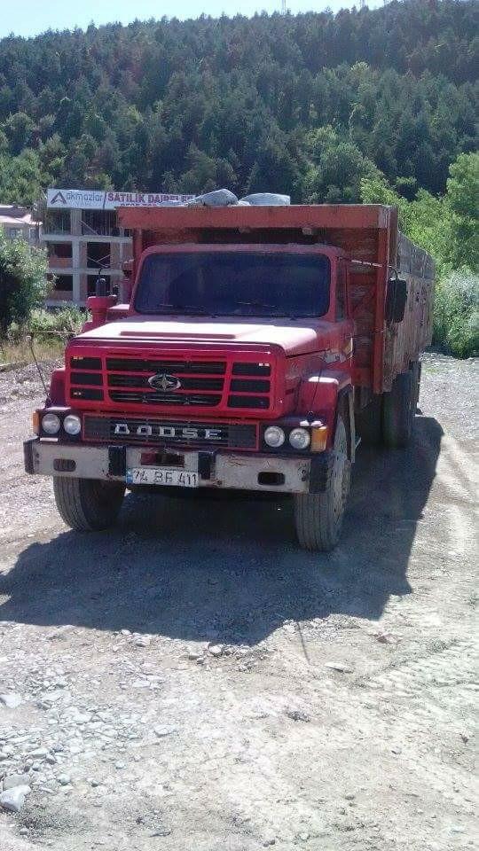 Dodge-19
