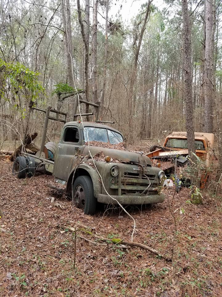 Dodge-in-rust