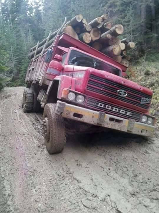 Dodge-met-sneeuw-kettingen-voor-de-modder