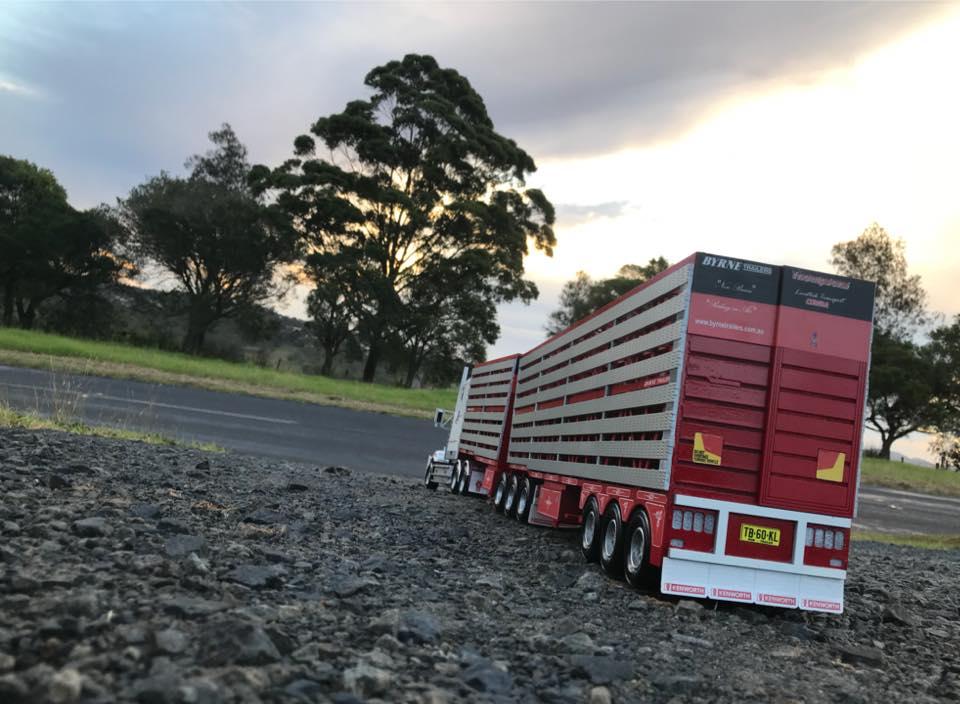 KW-T609--livestock-double--5