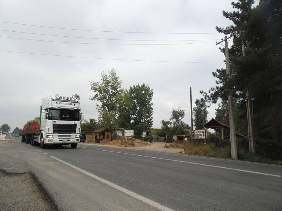 Scania-R144L-Topline-Daniel-Osorio
