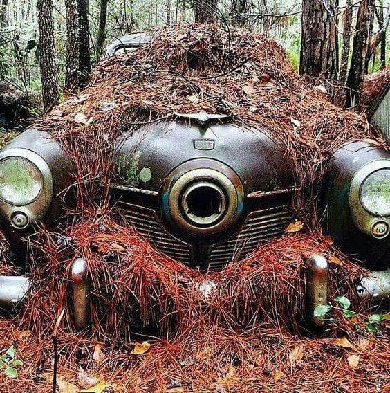 Studebaker-with-a-needle-nose