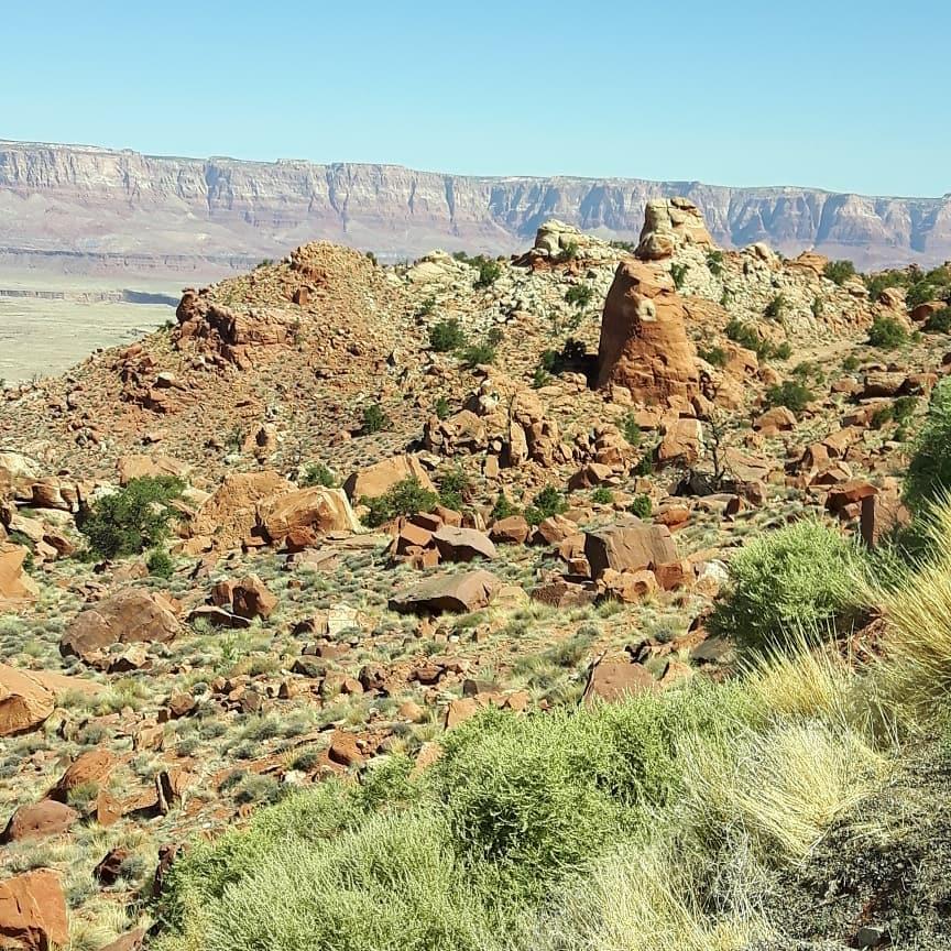 Het-mooiste-plek-waar-men-kan-rijden-met-de-truck-is-toch-wel-in-Arizona--op-de-us89-Patrick-Verkaar-in-Phoenix-USA-6
