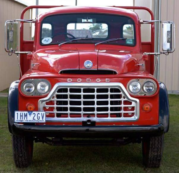 Dodge-9