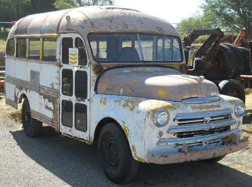 Dodge-busses