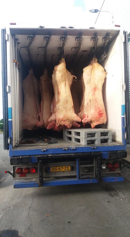 zo-weer-een-schoon-vrachtje-voor-de-vrijdag-Henk-Wevers-15-6-2018--2
