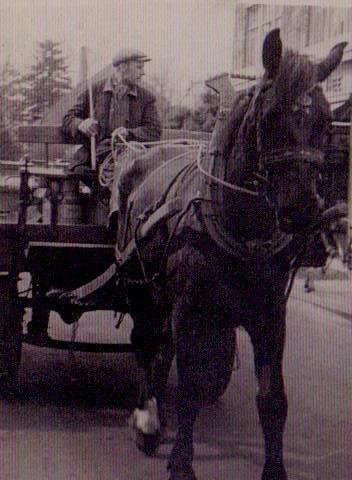 Giel-Bindels-Meerssen-melkrijder-melkfabriek-Pro-Infantibus-Maastricht-begin-jaren-1950