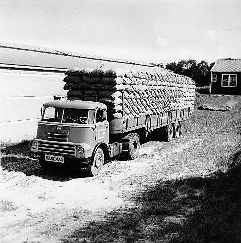 Flip-Lozekoot-bij-Cortus-Transport-Arnhem--Geladen-met-een-vracht-graszaad-van-Barenbrug