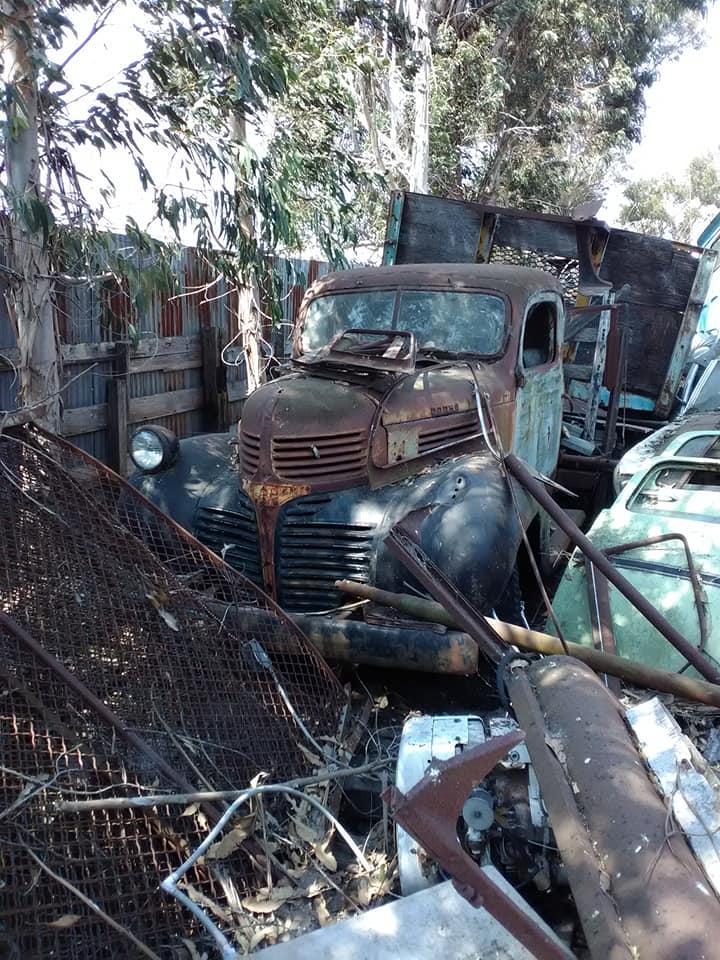 Dodge-in-rust-